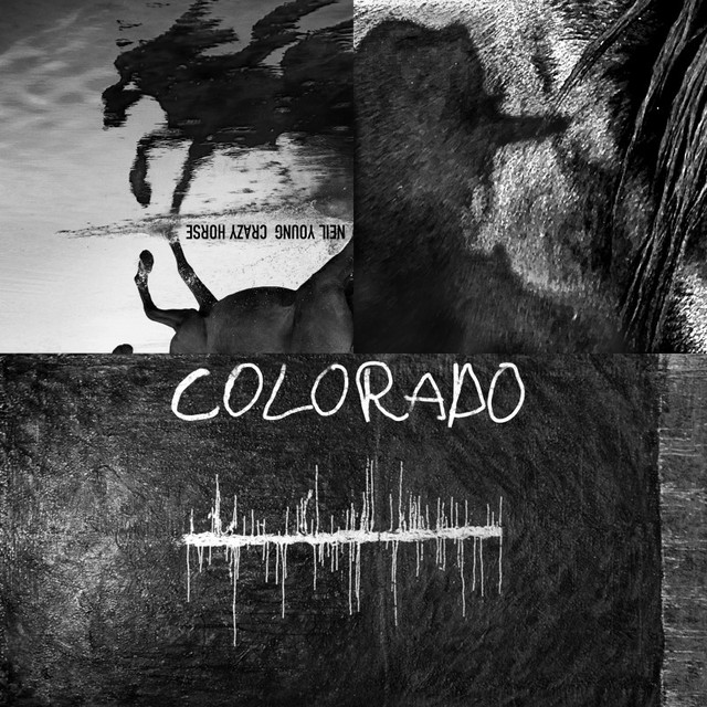Neil-Young-Colorado